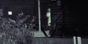 ghost farmhand ranchboydead